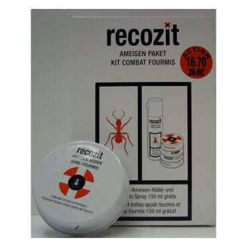 recozit kit fourmis